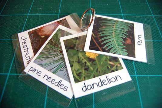 DIY Flash Cards