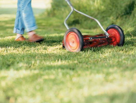 Mow your lawn safely bcliving for How often should you mow your lawn