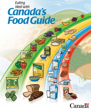external image canada_food_guide_2.jpg